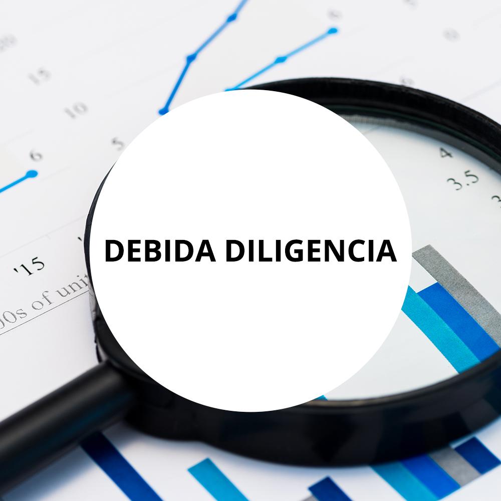 DEBIDA DILIGENCIA